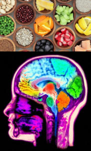 Food and Brain Image