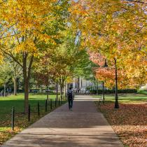 student walking on campus in fall setting