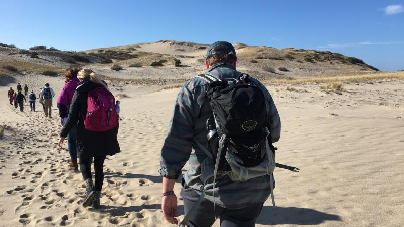 Students walking on a beach during the Exploring Cape Cod class