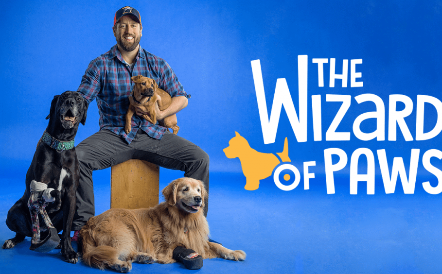 The Wizard of Paws
